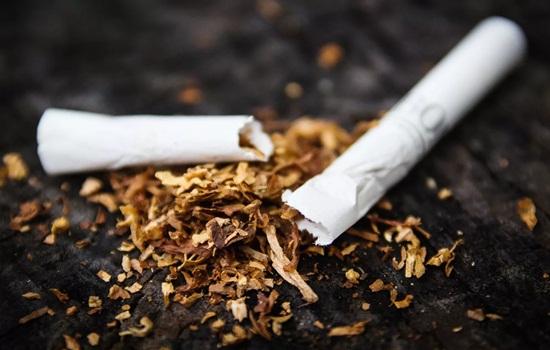 Можно ли курить айкос в кафе – мнения рестораторов, пользователей