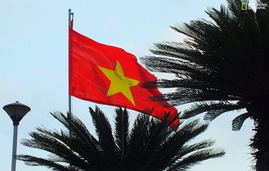 Можно ли курить айкос во Вьетнаме – правила для туристов